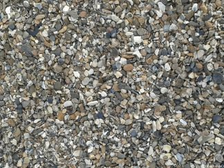Shingle Friday Freebie