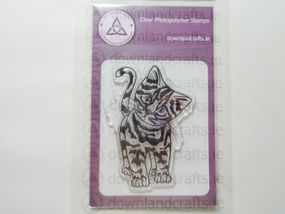 Tabby Cat A7 Clear Photopolymer Stamp