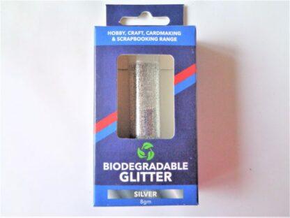 Biodegradable Glitter - Silver